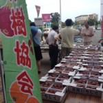 淡路島いちじく品評会